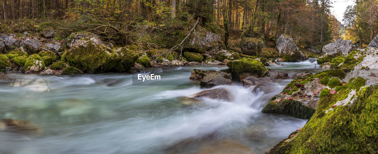 water, rock, forest, tree, motion, beauty in nature, rock - object, long exposure, land, scenics - nature, flowing water, solid, plant, blurred motion, nature, river, no people, flowing, waterfall, outdoors, stream - flowing water, power in nature, rainforest