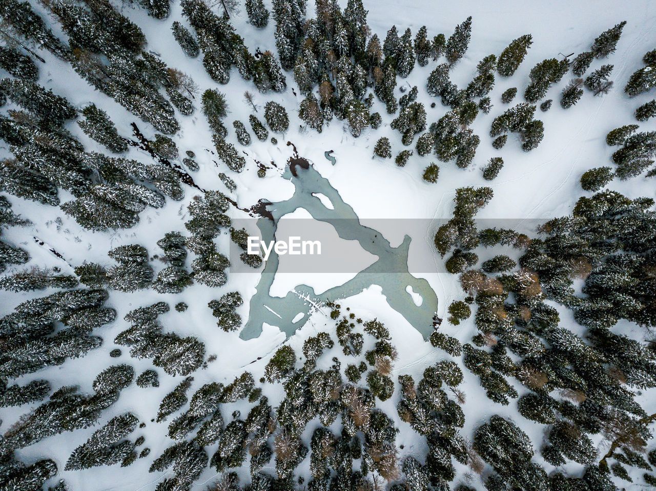 winter, snow, cold temperature, nature, covering, plant, no people, beauty in nature, day, tree, white color, land, high angle view, tranquility, field, outdoors, scenics - nature, tranquil scene, non-urban scene, snowcapped mountain