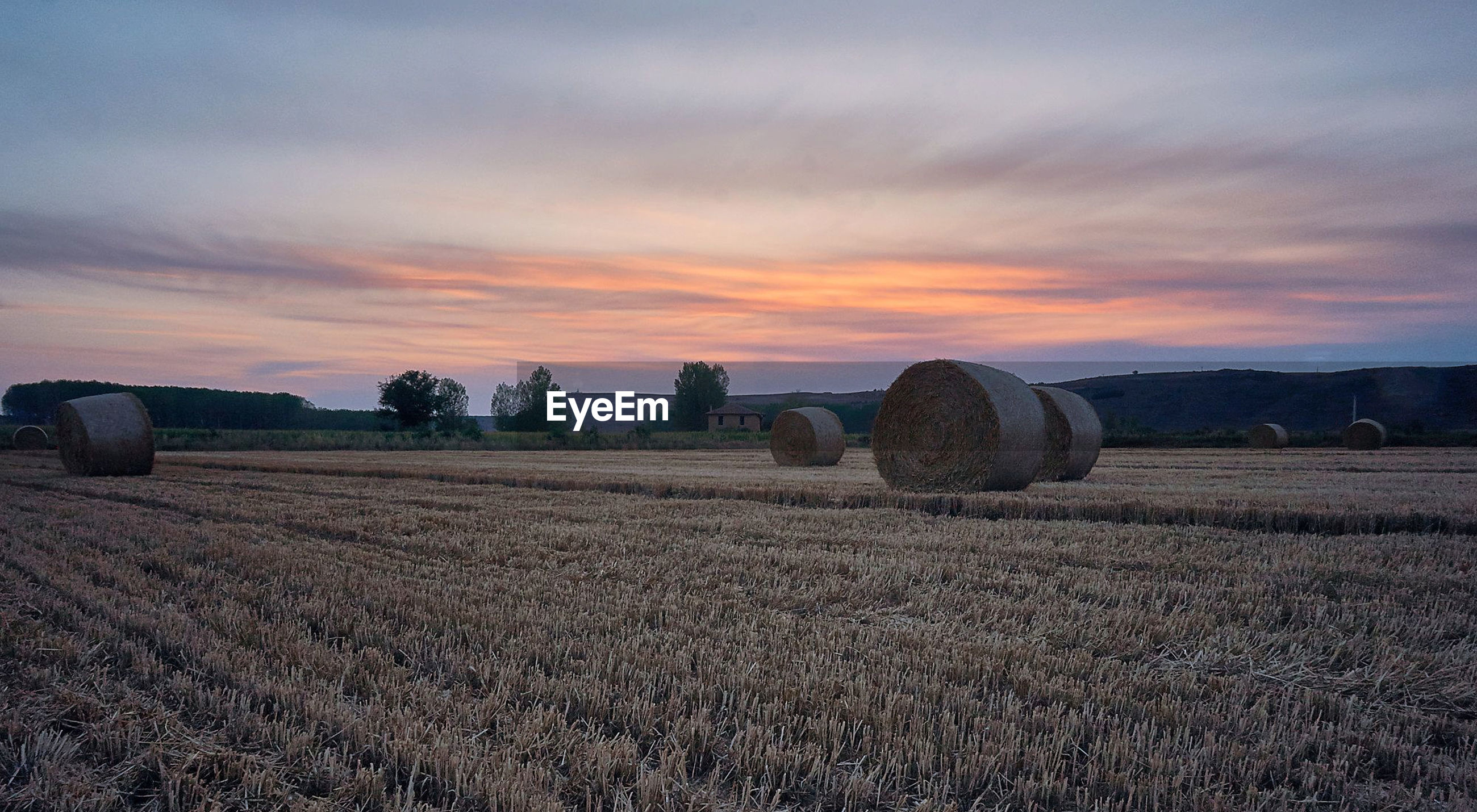 HAY BALES IN FIELD AGAINST SKY DURING SUNSET