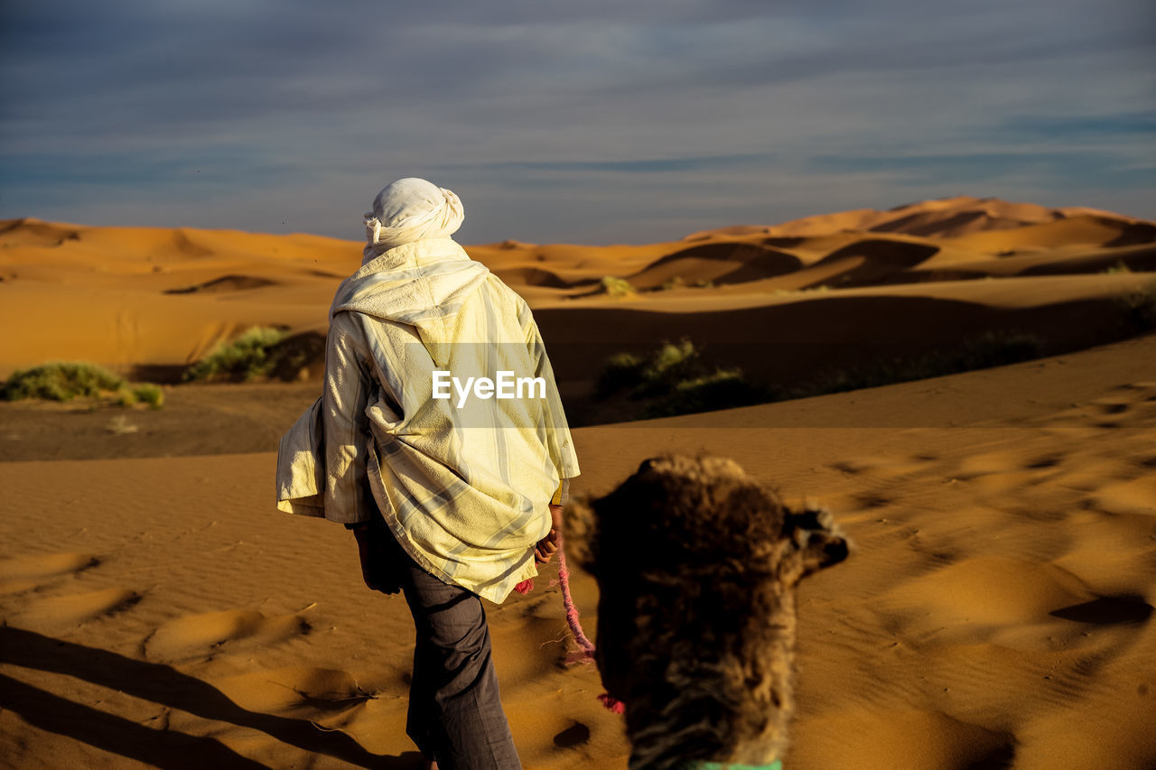 Rear View Of Man Walking With Camel On Desert