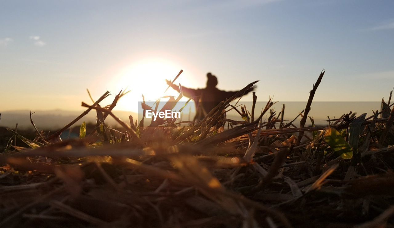 sky, sunset, nature, land, sunlight, field, human arm, beauty in nature, plant, leisure activity, silhouette, outdoors, real people, lens flare, focus on background, selective focus, one person, standing, lifestyles, sun, arms raised, stick - plant part