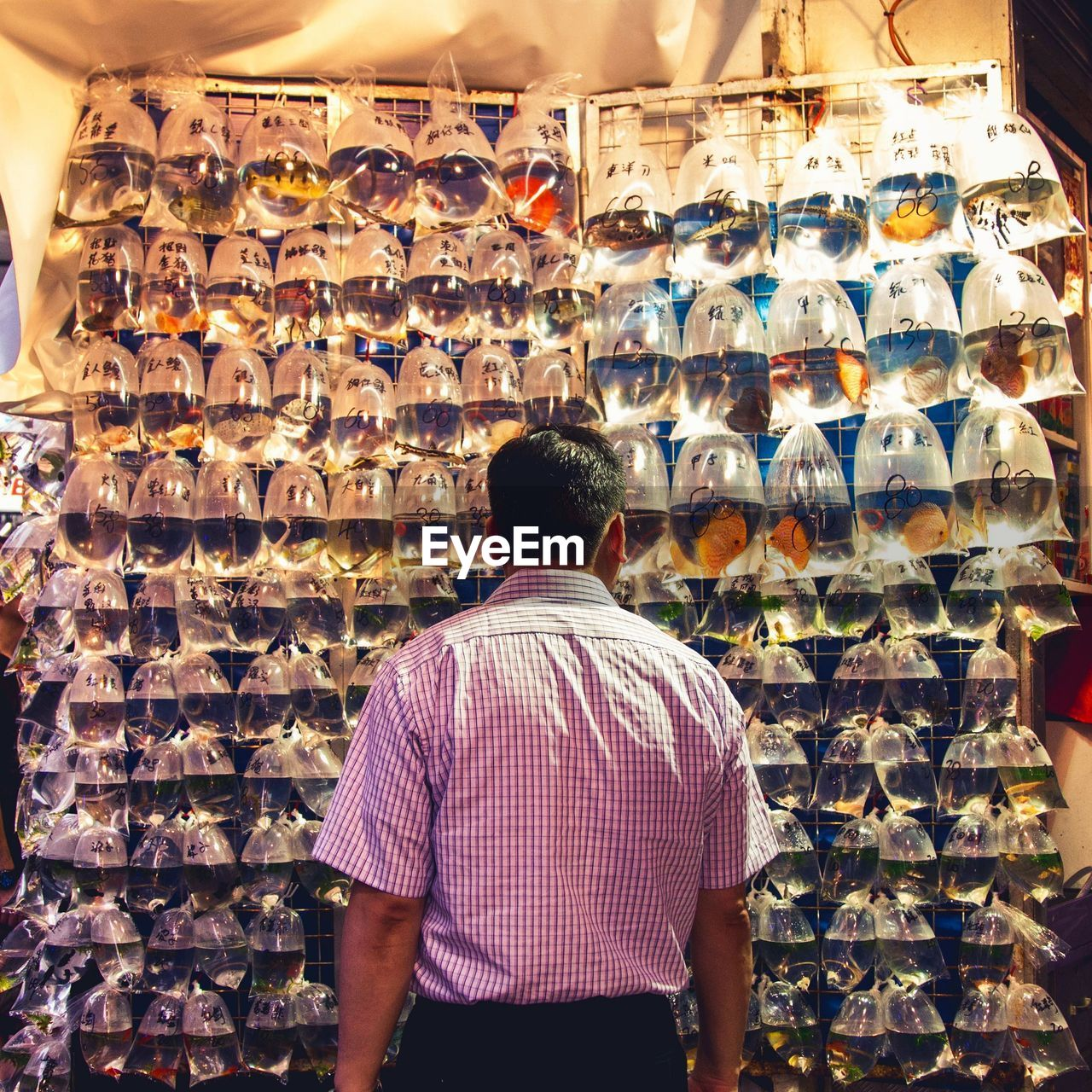 Rear View Of Man Looking At Fish In Plastic Bags For Sale In Shop