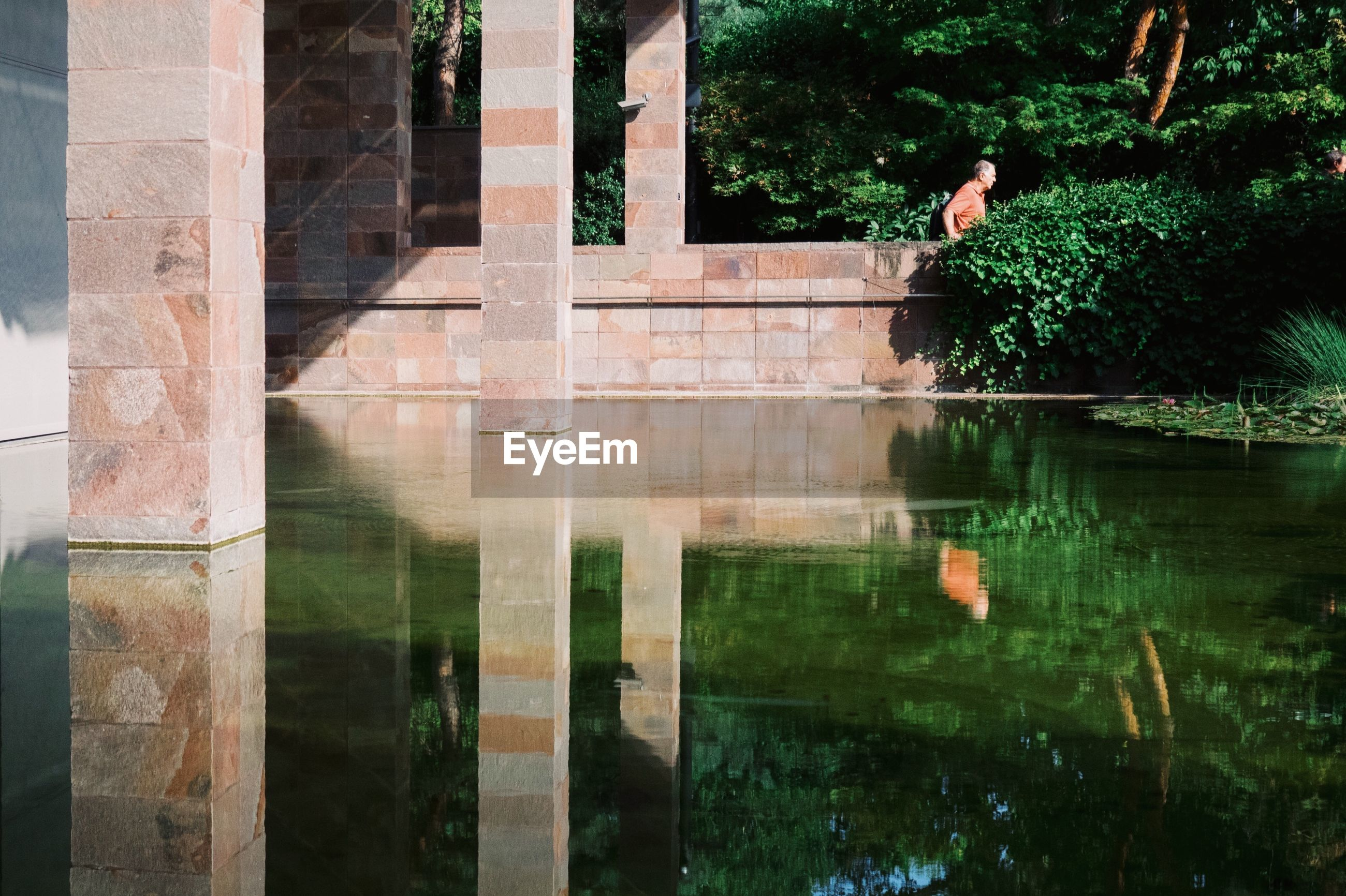 reflection, architecture, built structure, water, lake, nature, plant, tree, day, outdoors, waterfront, one person, building exterior, architectural column, growth, history