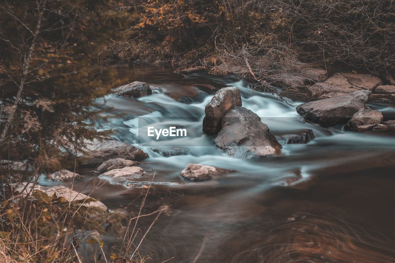 water, long exposure, motion, nature, beauty in nature, land, flowing water, scenics - nature, rock, no people, tree, forest, solid, day, rock - object, blurred motion, waterfall, environment, flowing, outdoors, stream - flowing water, power in nature