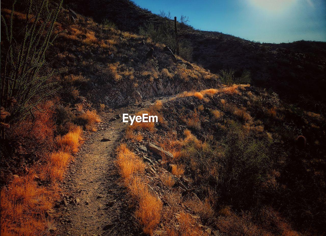 Aerial view of trail through desert landscape against sky