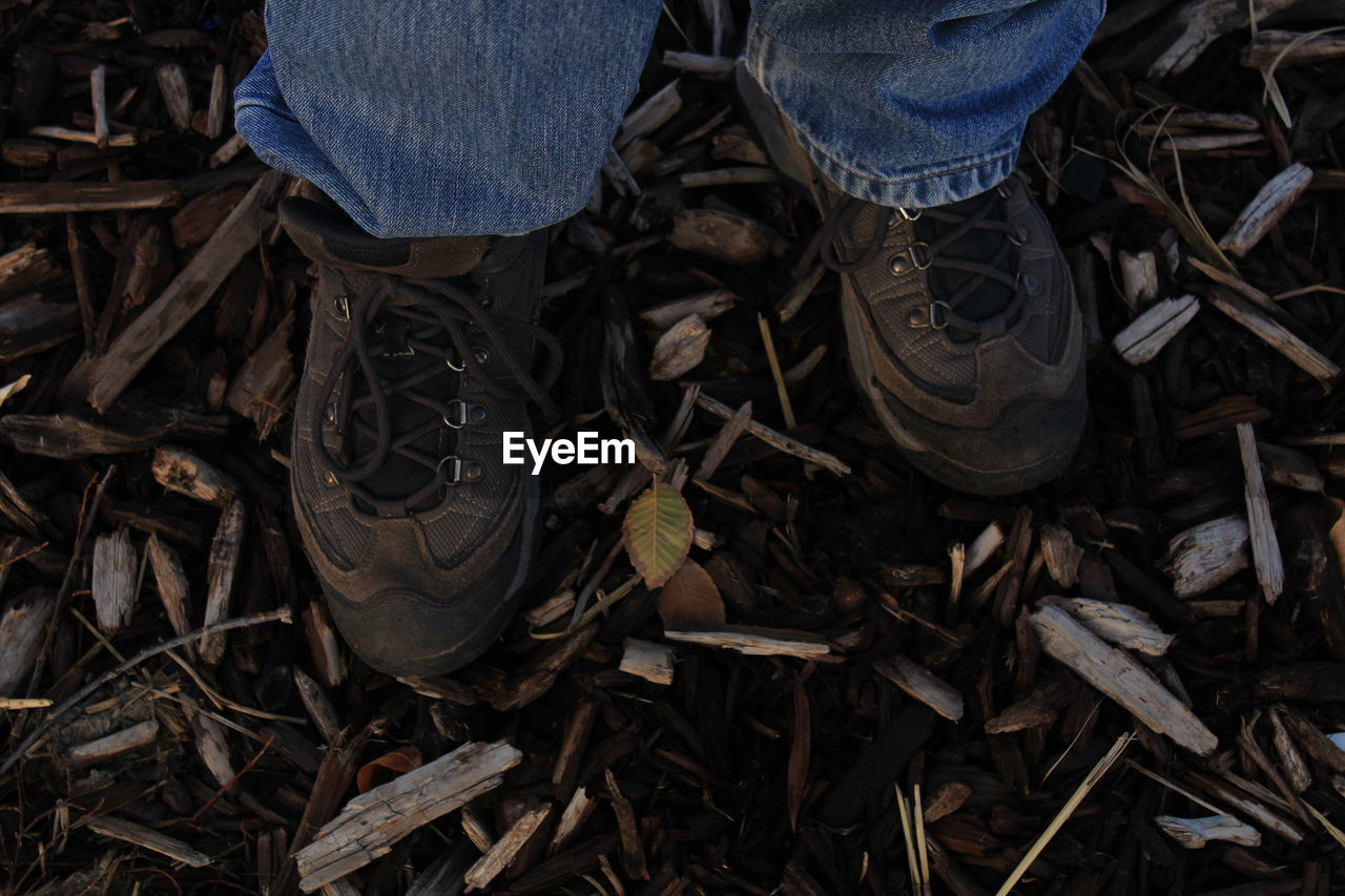 Low Section Of Man Wearing Shoes Standing On Broken Sticks At Forest
