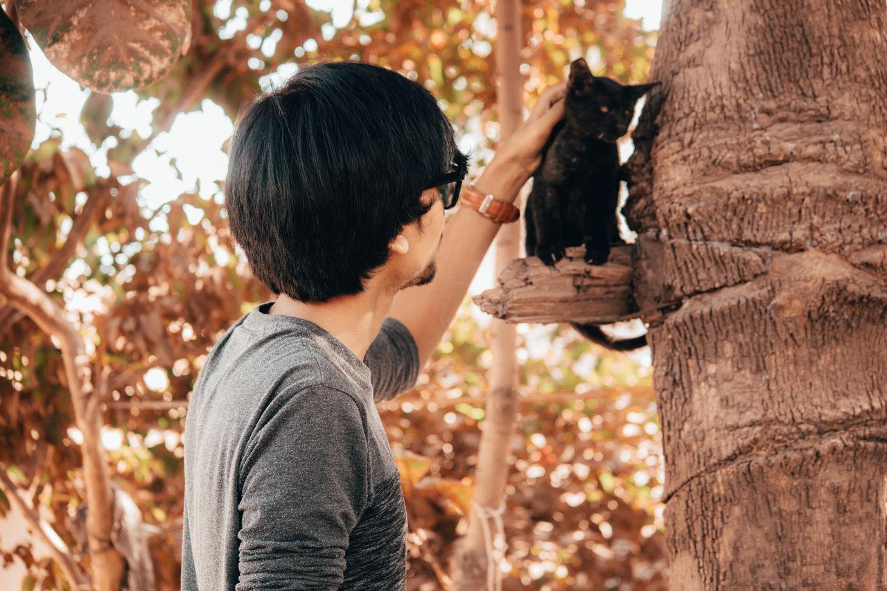 Man stroking cat sitting on tree trunk