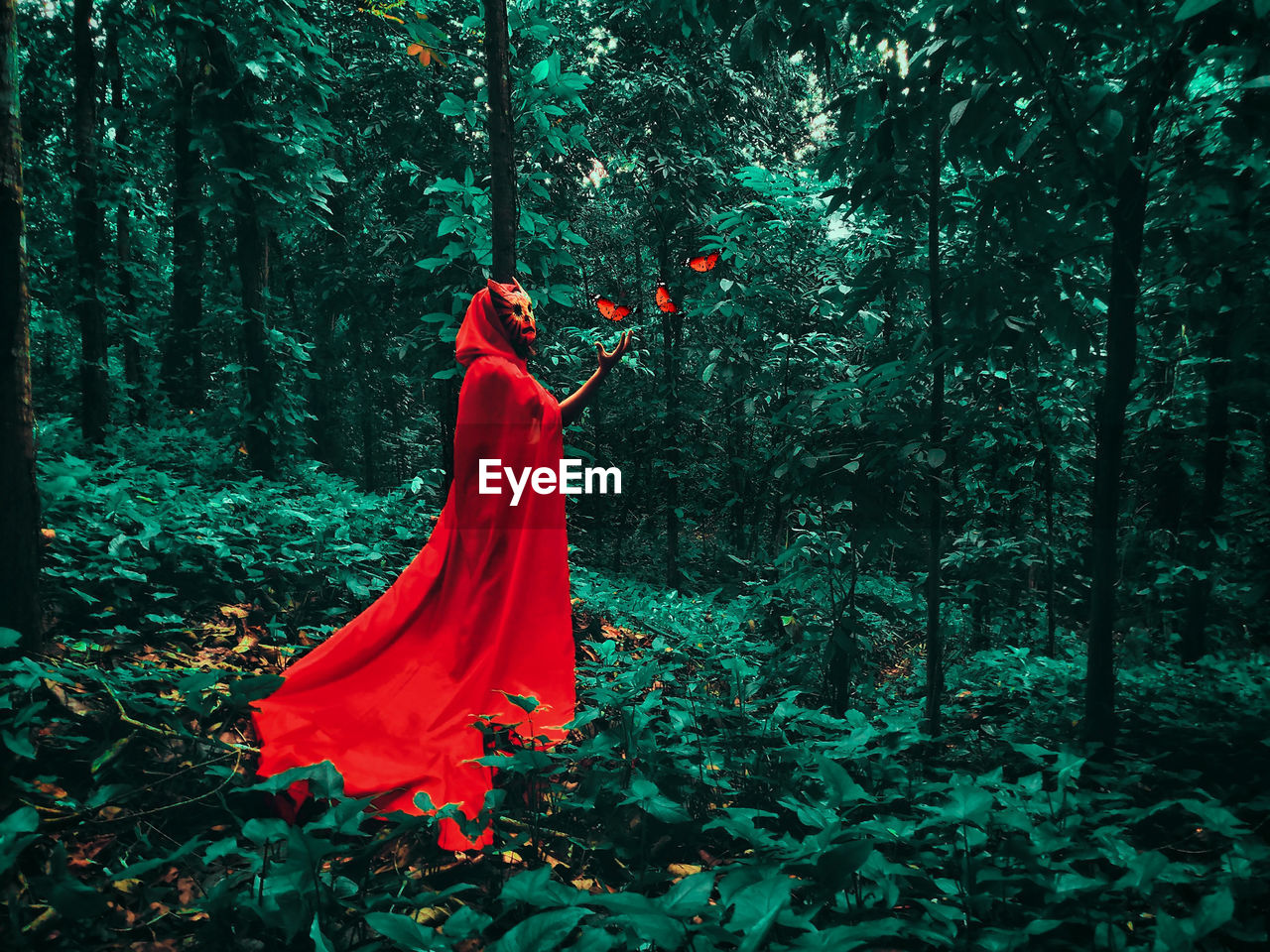 Woman With Red Cape Standing By Plants In Forest