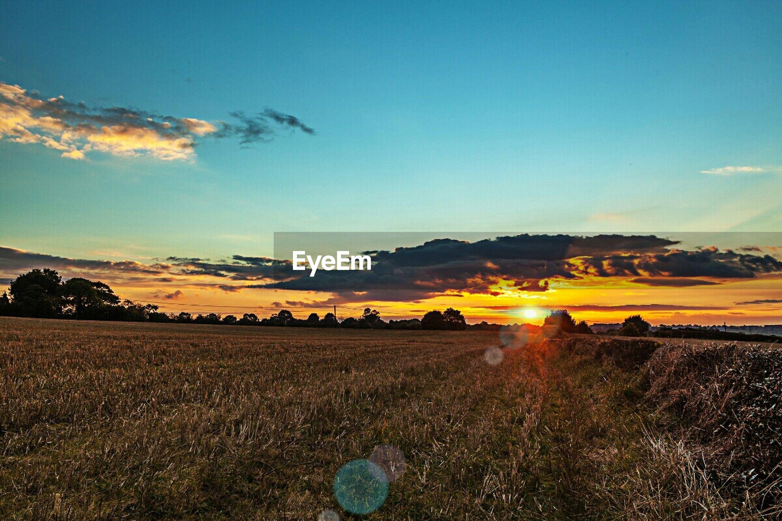 landscape, tranquil scene, scenics, tranquility, sunset, sky, beauty in nature, field, nature, blue, idyllic, mountain, non-urban scene, rural scene, copy space, horizon over land, remote, grass, sunlight, cloud - sky
