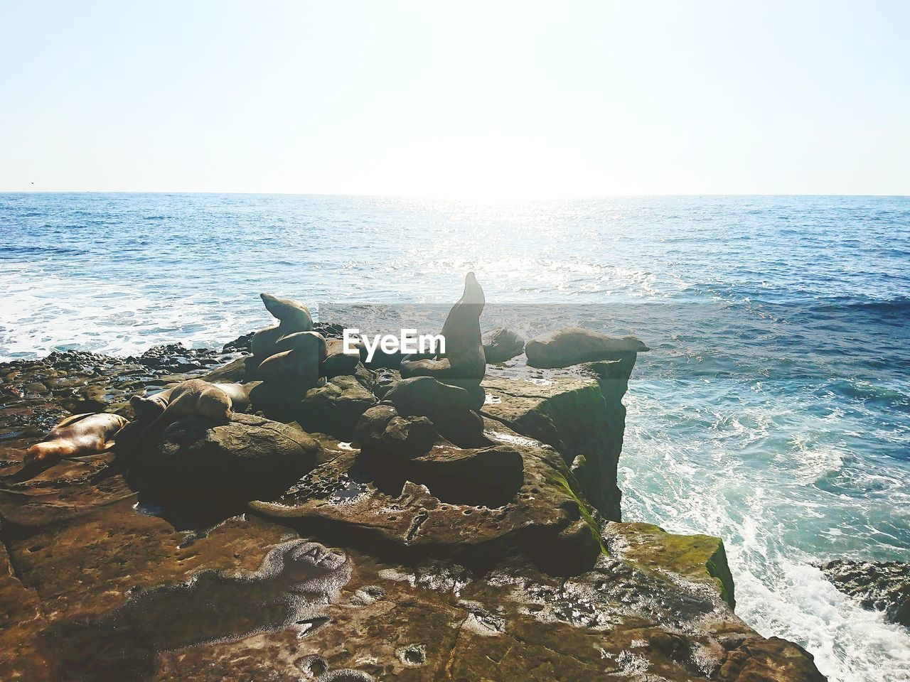 sea, water, horizon, horizon over water, rock, sky, rock - object, beauty in nature, scenics - nature, solid, beach, nature, tranquility, tranquil scene, day, no people, land, clear sky, motion, outdoors, marine