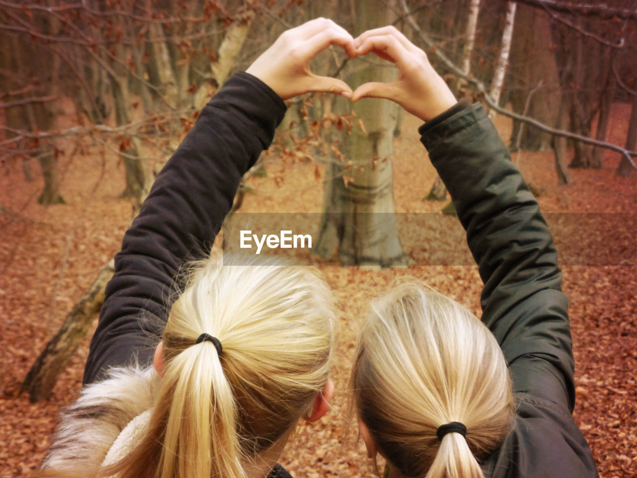 togetherness, blond hair, rear view, day, real people, outdoors, women, fun, human body part, autumn, forest, tree, nature, human hand, friendship, people, adult, adults only
