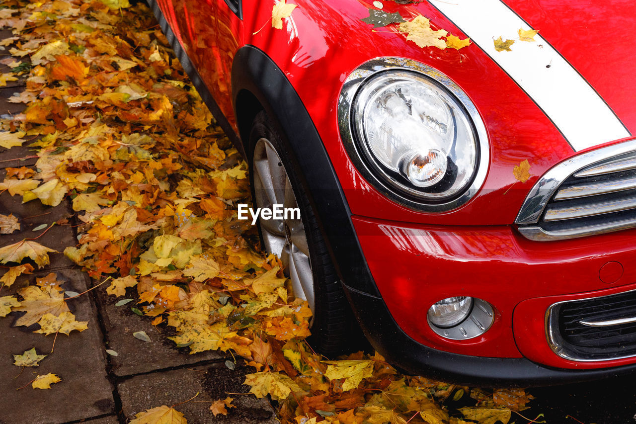 mode of transportation, transportation, autumn, motor vehicle, change, red, land vehicle, car, day, leaf, plant part, no people, nature, close-up, headlight, outdoors, orange color, stationary, high angle view, vintage car, leaves, wheel, tire