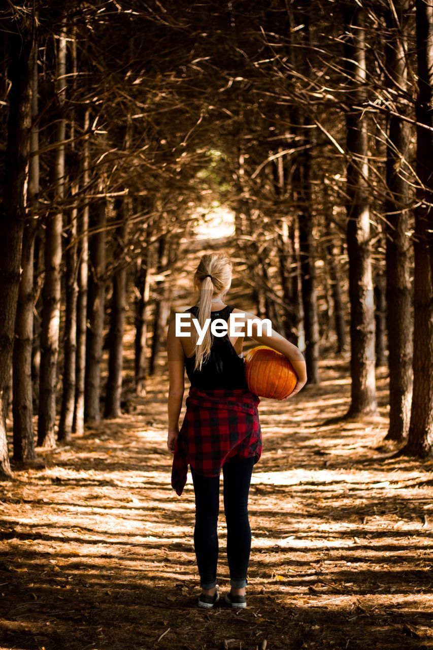 Rear View Of Woman Carrying Pumpkin In Forest