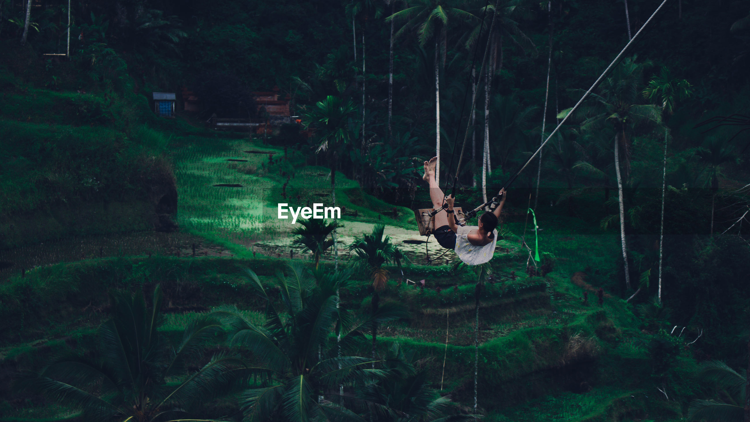 Woman swinging in forest