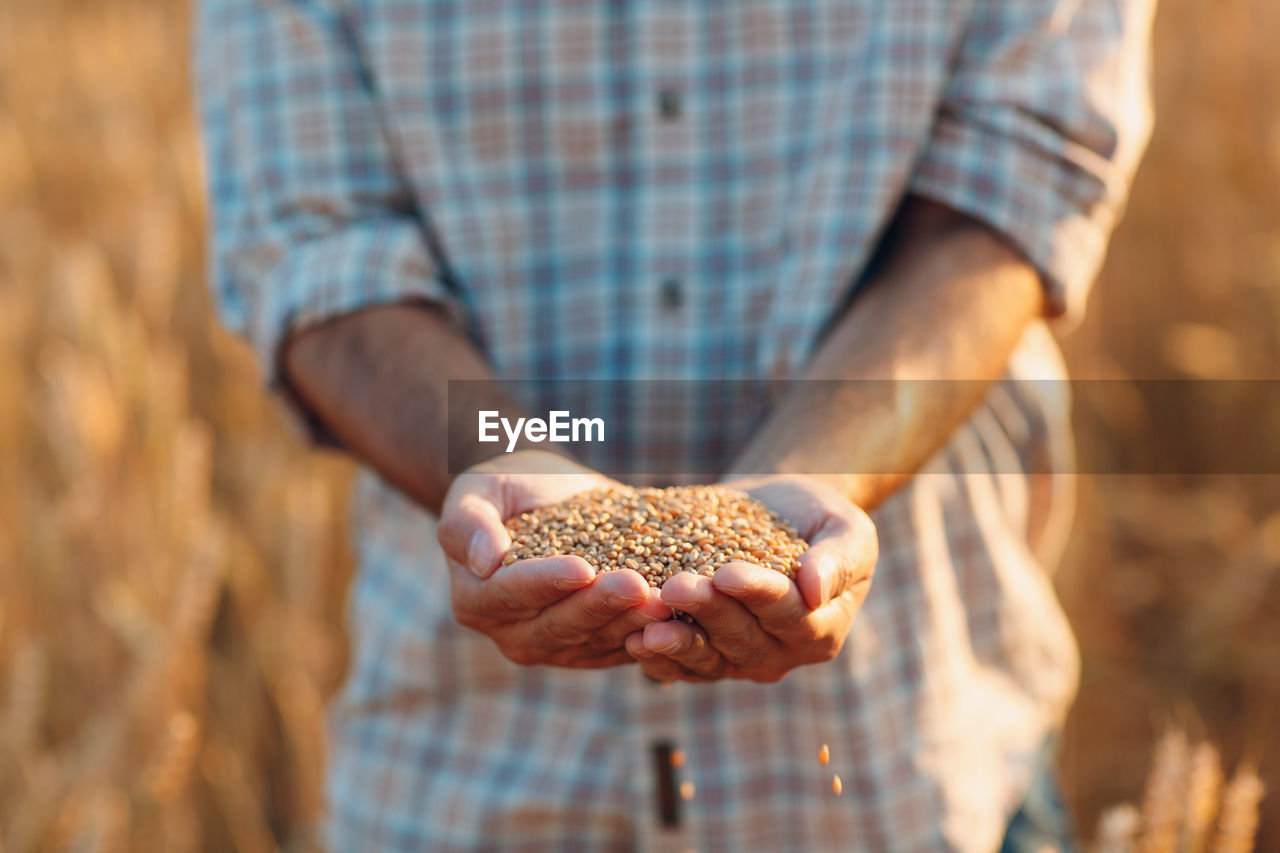 Midsection of man holding grains outdoors