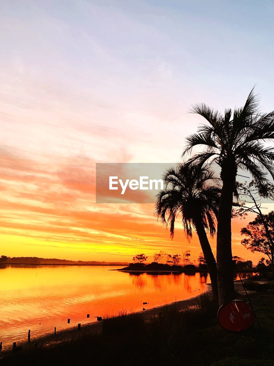 sunset, sky, tropical climate, palm tree, beauty in nature, water, tree, scenics - nature, plant, orange color, tranquil scene, tranquility, silhouette, cloud - sky, beach, nature, sea, no people, idyllic, outdoors, coconut palm tree, tropical tree, romantic sky