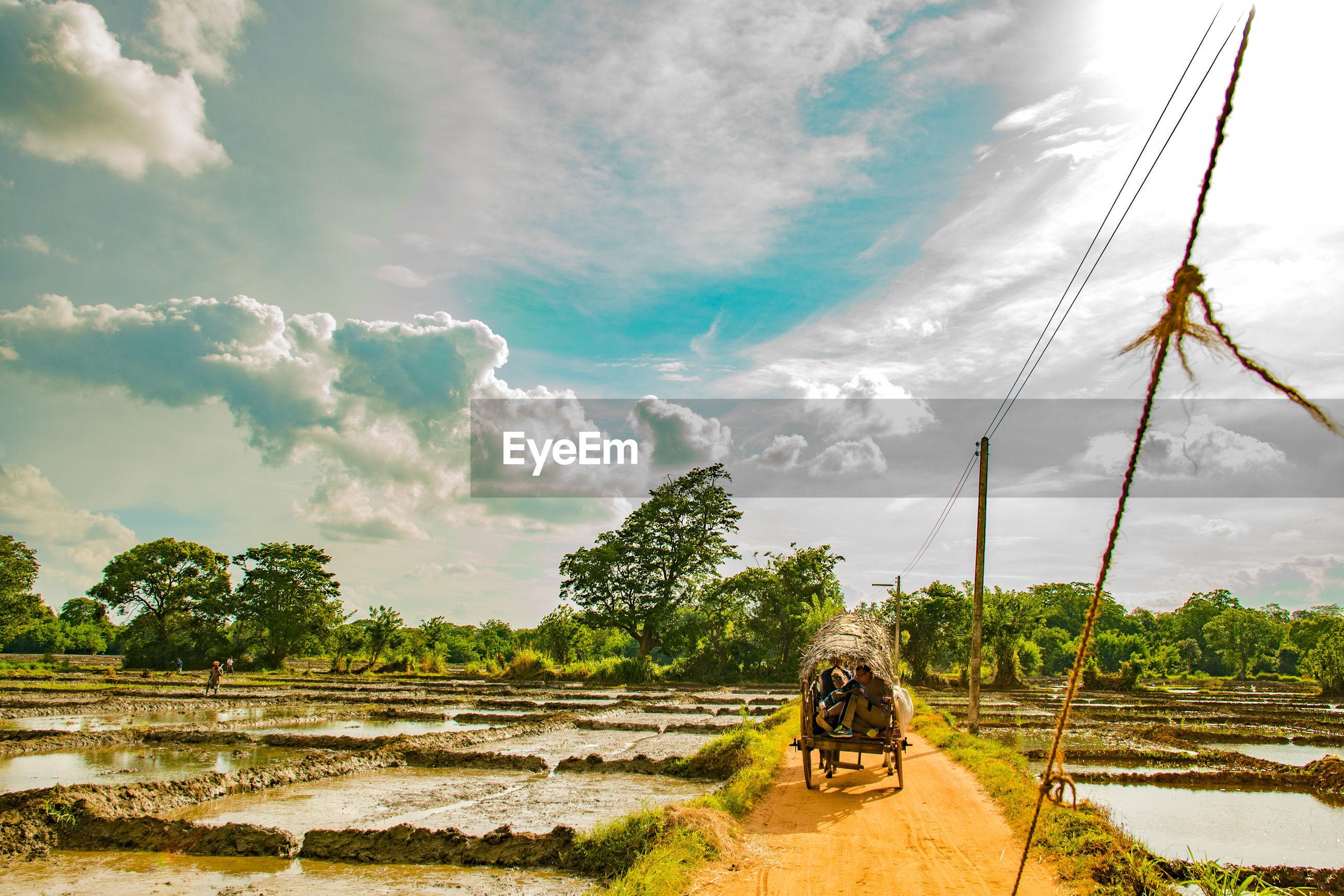 People in cart on dirt road against sky