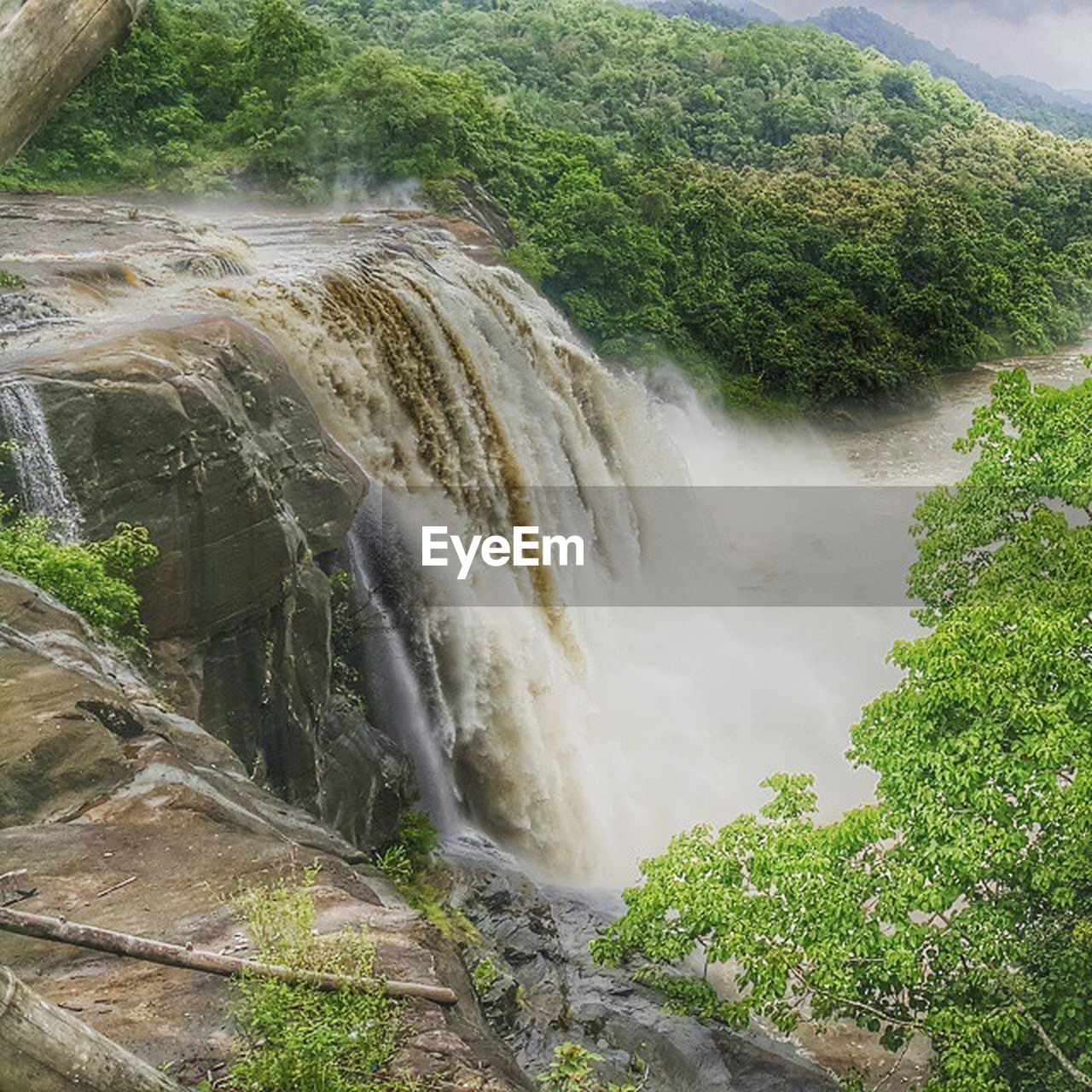 waterfall, water, flowing water, nature, tree, motion, beauty in nature, scenics, high angle view, river, day, no people, outdoors, tranquil scene, forest, long exposure, plant, sky