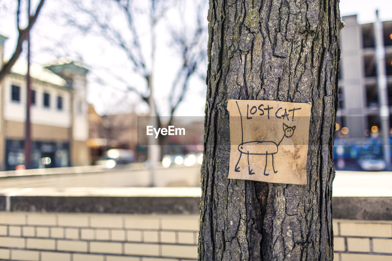 tree trunk, tree, focus on foreground, text, day, communication, outdoors, close-up, no people, branch, bare tree, nature, architecture