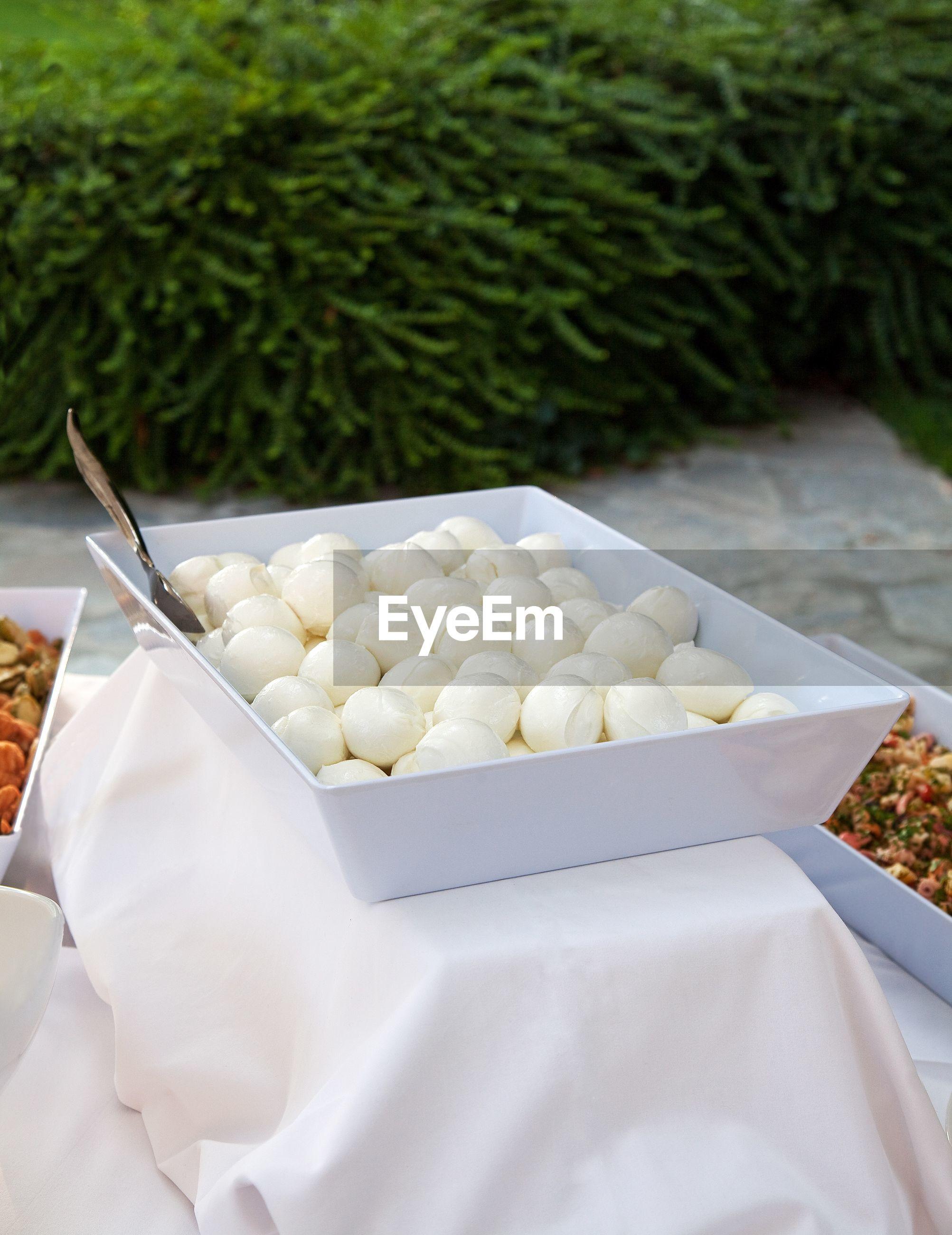Dish of mozzarella on table in a garden party