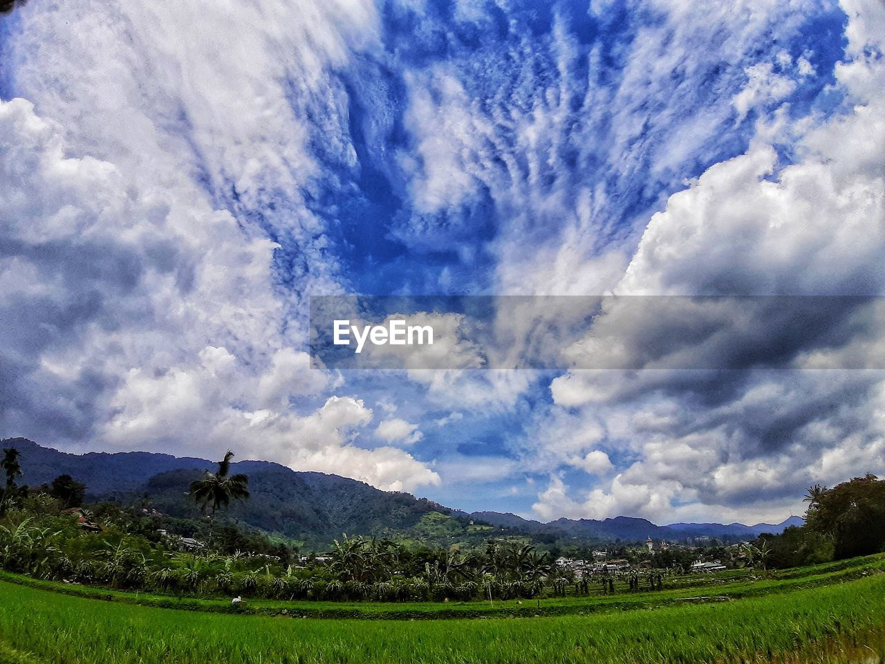 cloud - sky, sky, beauty in nature, scenics - nature, environment, tranquil scene, landscape, land, plant, tranquility, nature, field, day, no people, tree, mountain, non-urban scene, rural scene, green color, outdoors