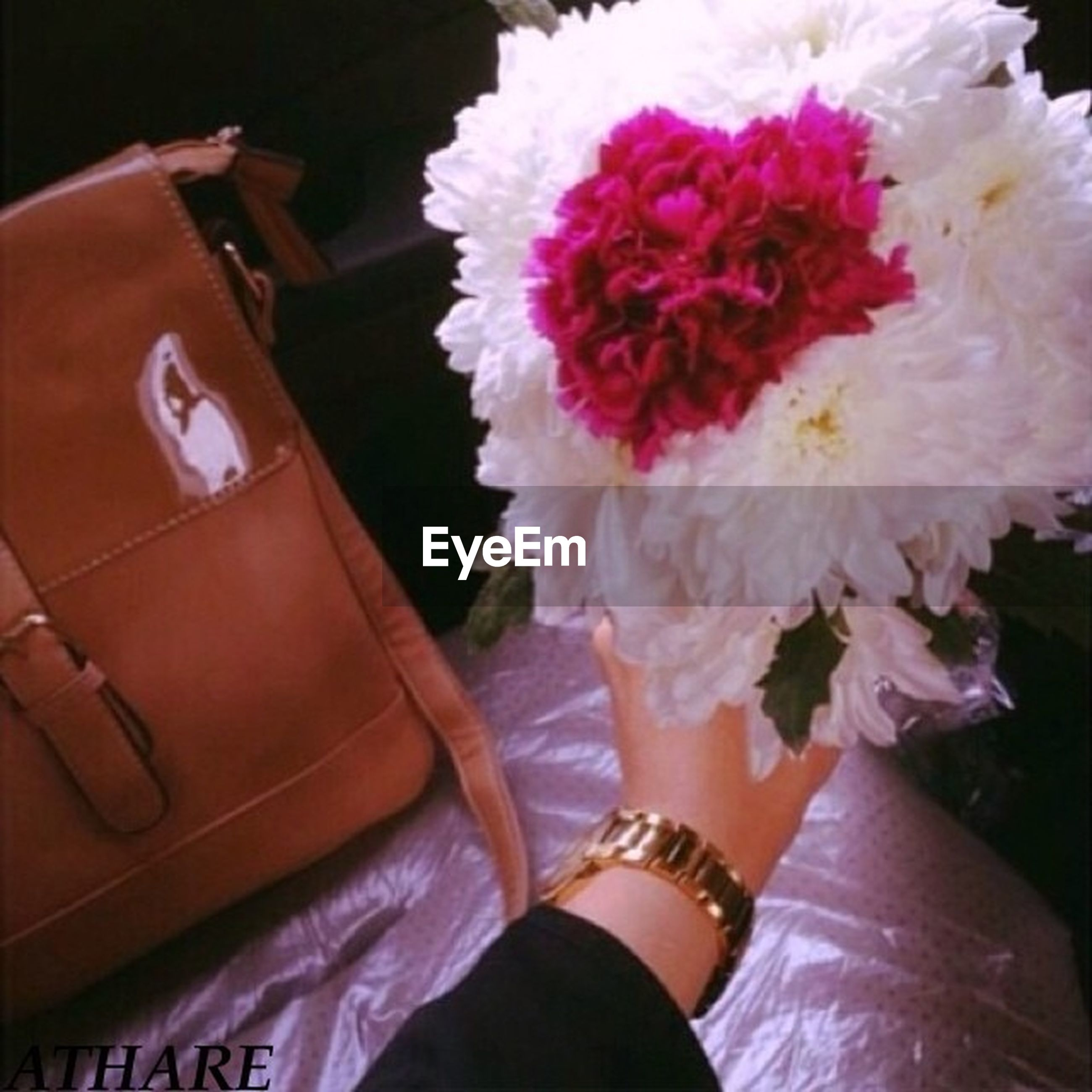 flower, holding, lifestyles, person, pink color, indoors, leisure activity, part of, close-up, high angle view, low section, petal, freshness, fashion, young women, casual clothing
