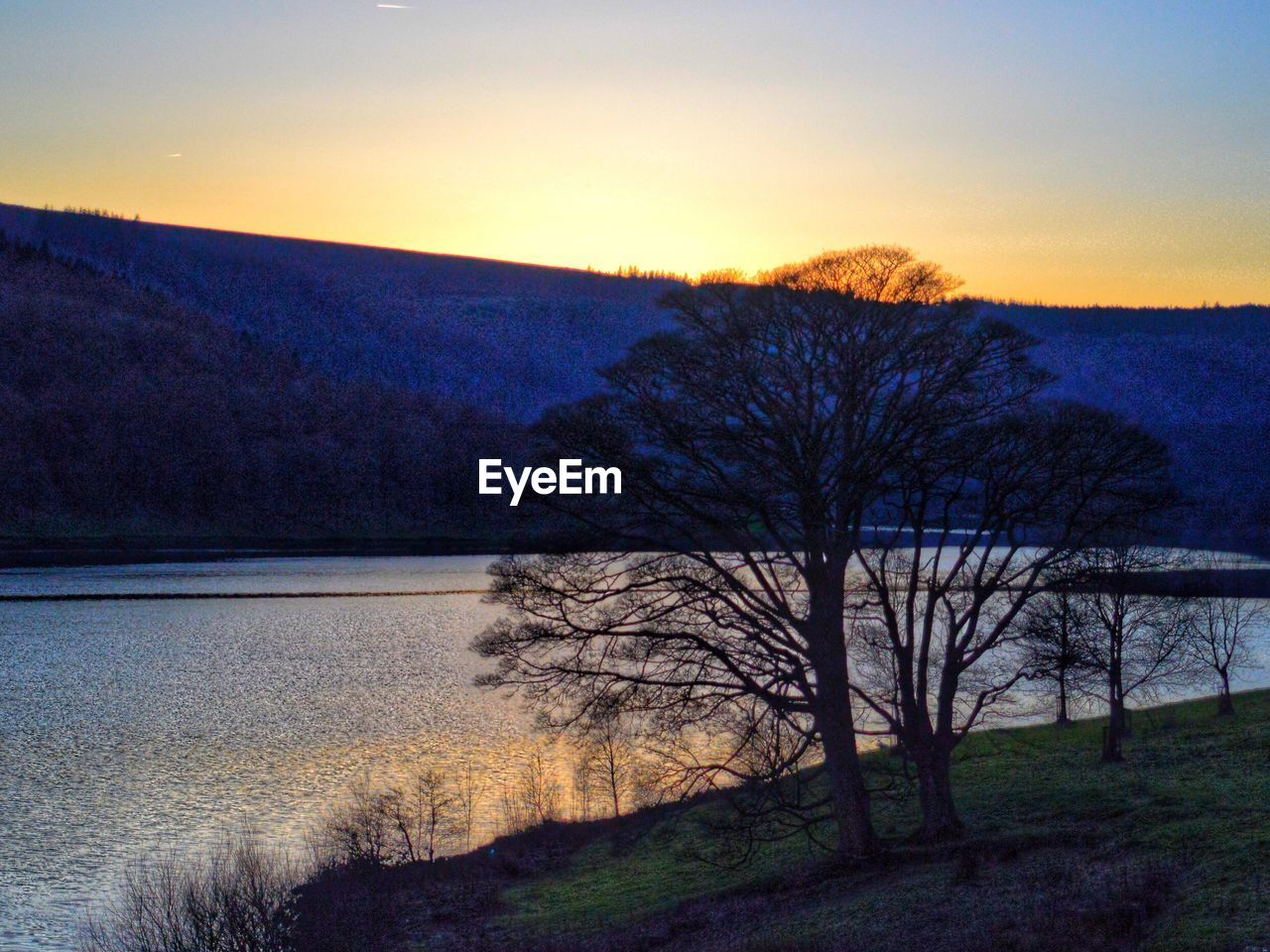 bare tree, nature, tree, beauty in nature, tranquil scene, scenics, tranquility, sunset, water, outdoors, landscape, sky, no people, clear sky, lake, day, mountain, grass