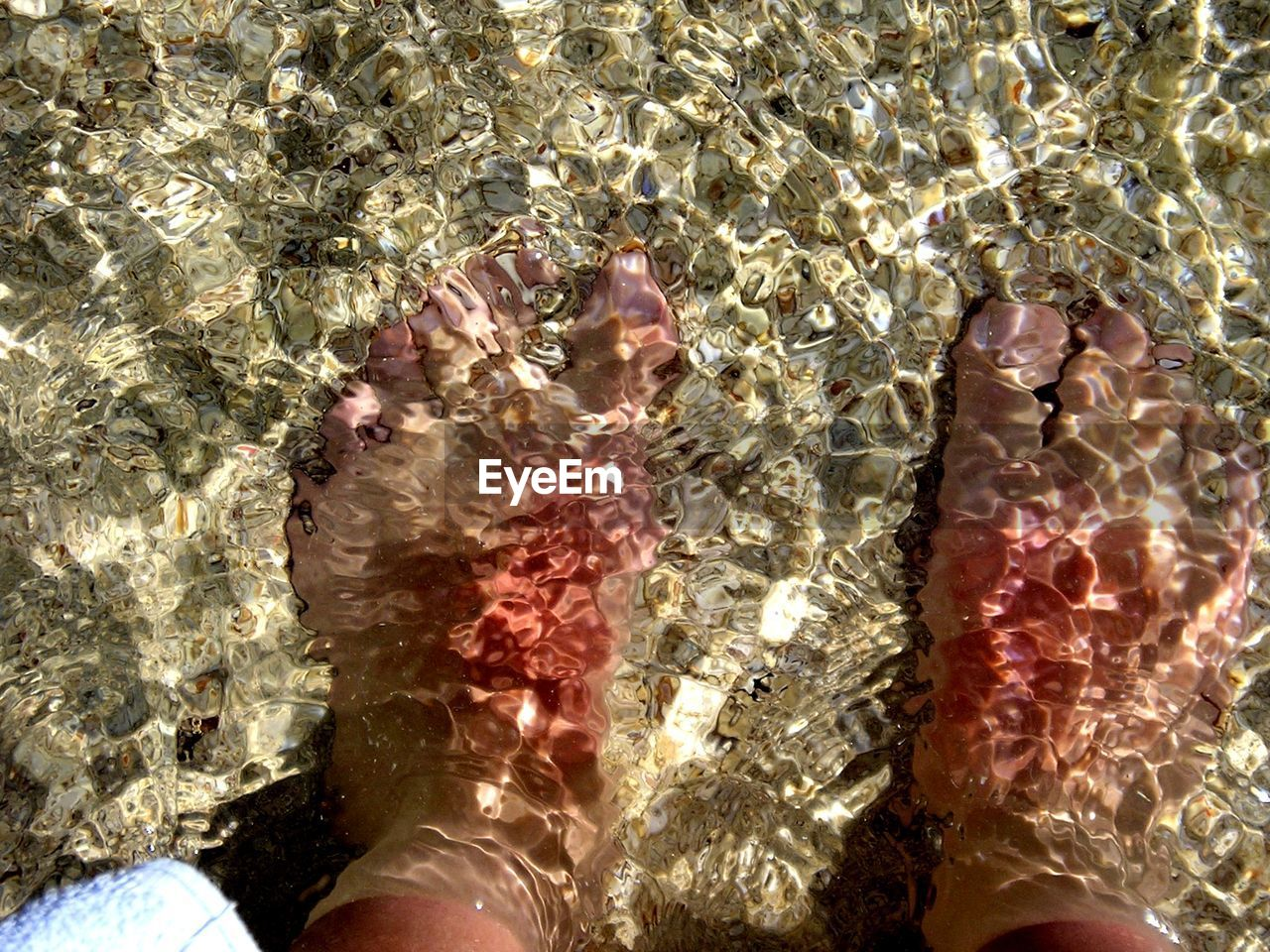low section, high angle view, human leg, real people, water, human body part, sunlight, one person, day, shallow, outdoors, refraction, nature, close-up, freshness, people