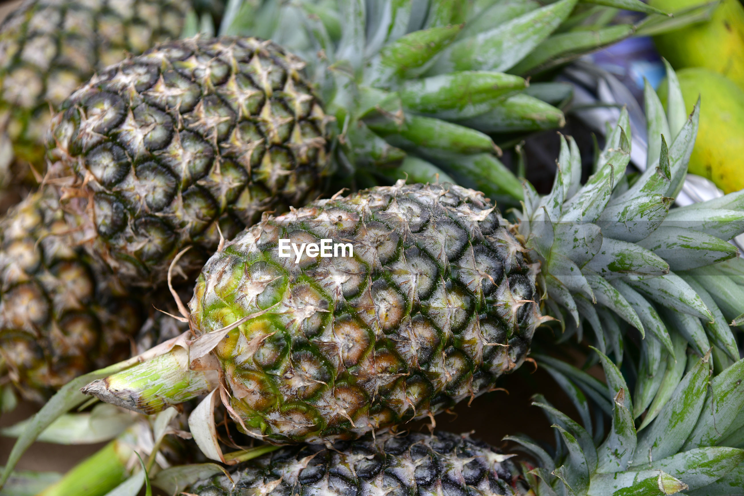 Full frame shot of pineapples for sale in market