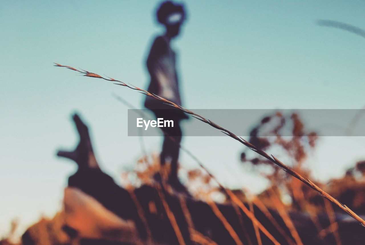 Defocused Image Of Child Standing On Fallen Tree Against Clear Sky