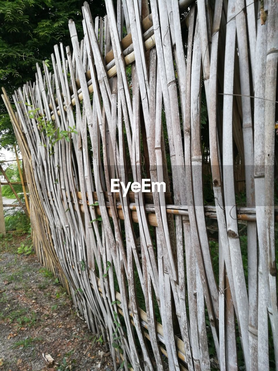 outdoors, wood - material, day, no people, large group of objects, abundance, tree, tree trunk, bamboo - plant, close-up, nature