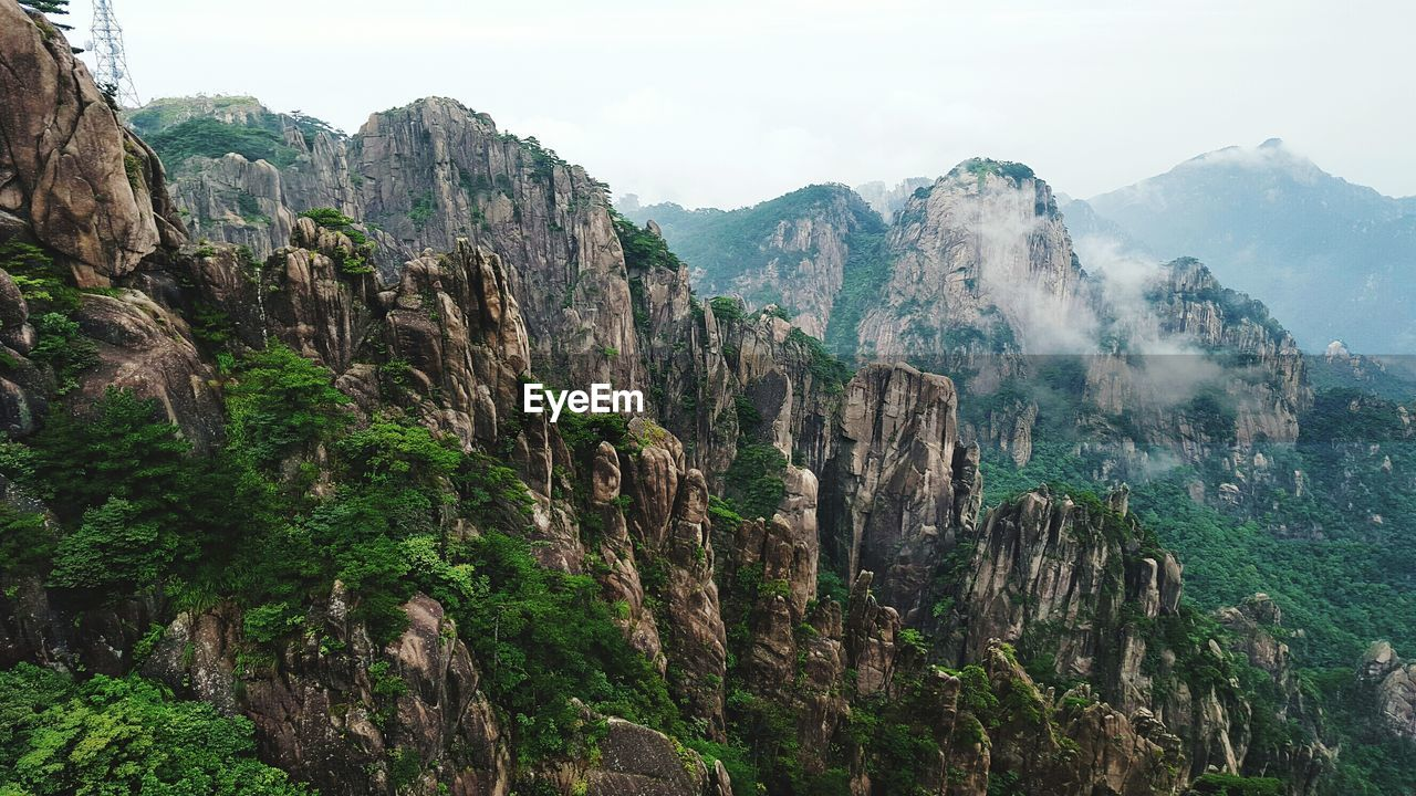 Scenic View Of Trees Growing On Mountains Against Sky