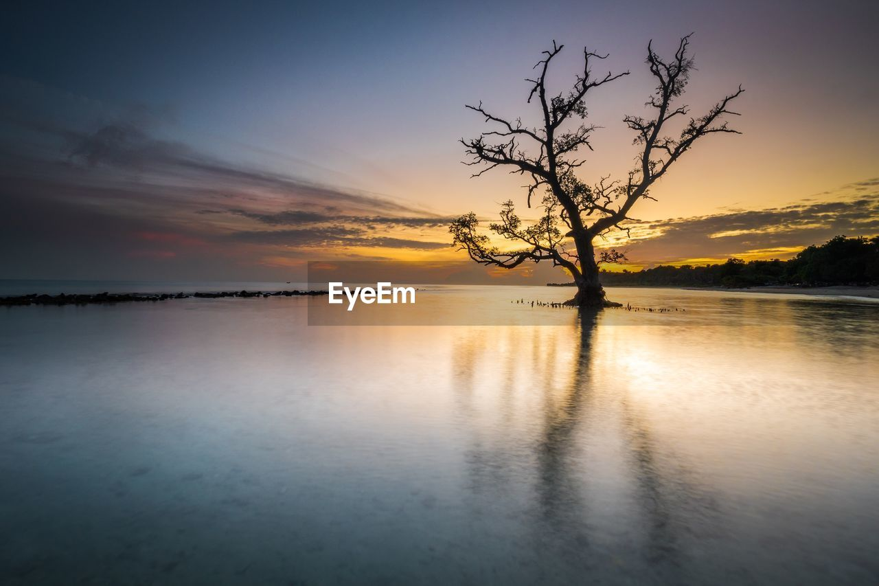 sky, tranquility, scenics - nature, beauty in nature, tranquil scene, sunset, water, tree, cloud - sky, idyllic, reflection, no people, nature, orange color, waterfront, plant, non-urban scene, outdoors, sea