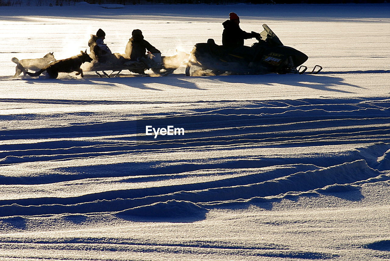 cold temperature, winter, snow, shadow, sunlight, frozen, outdoors, nature, men, lying down, sitting, day, people, adult