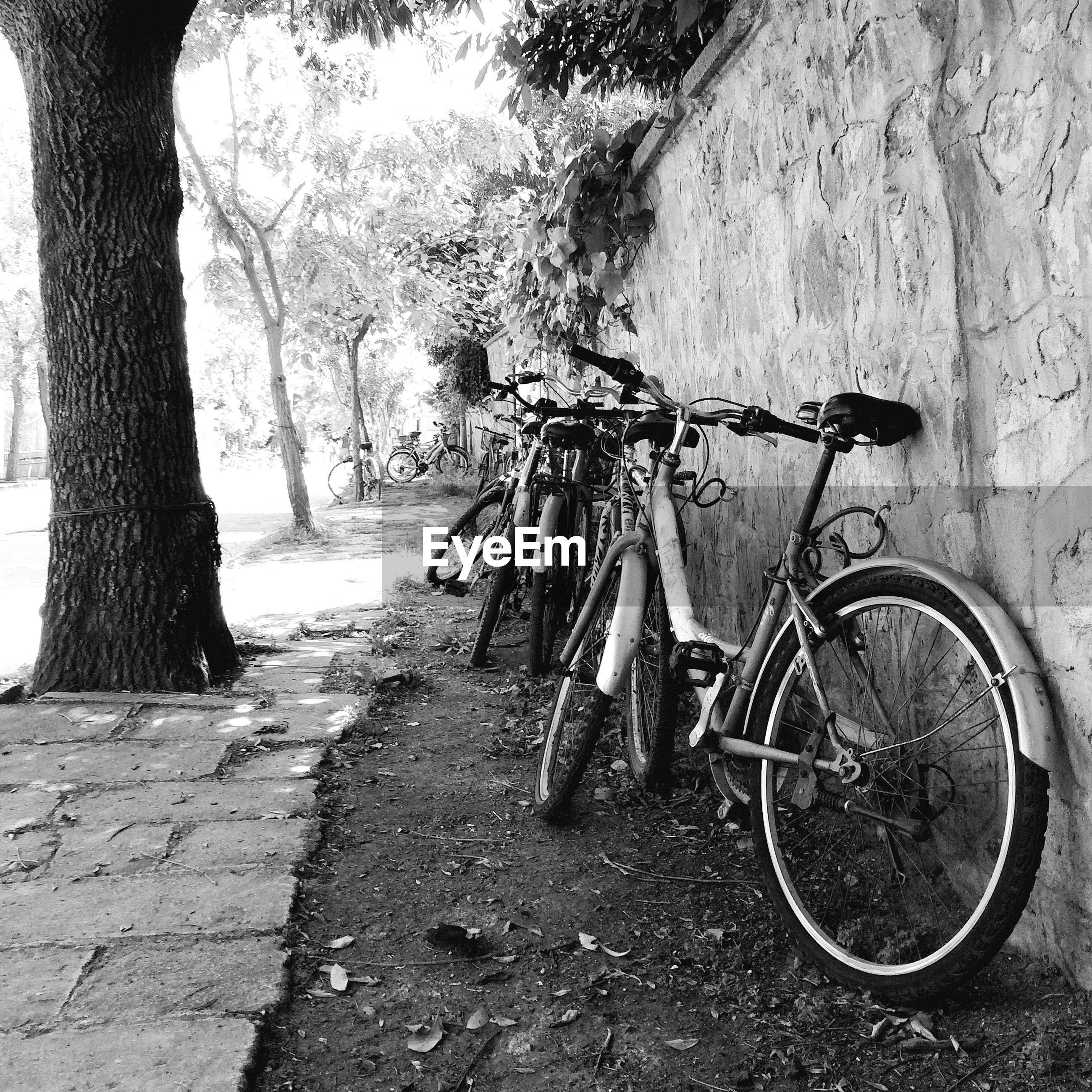Bicycles parked on footpath by wall
