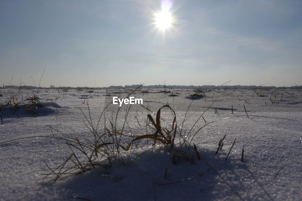 sun, sunlight, nature, lens flare, cold temperature, winter, snow, beauty in nature, sky, outdoors, tranquility, scenics, no people, sea, day, water