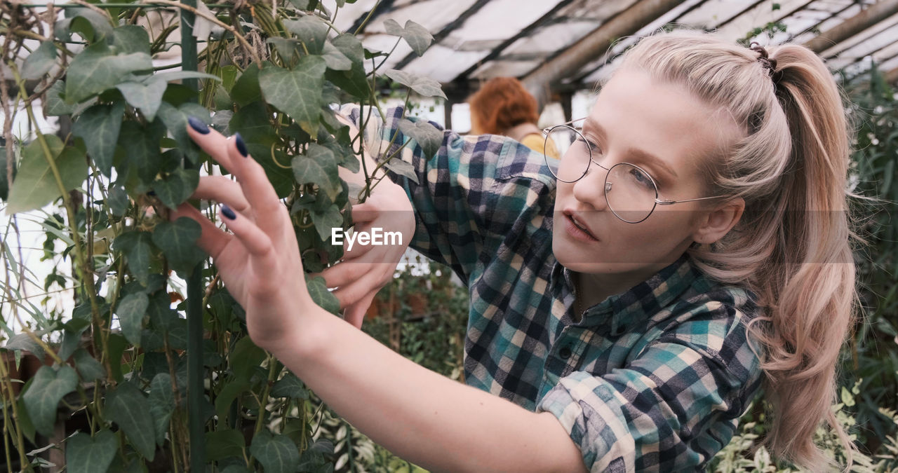 Close-up of woman examining plants in greenhouse
