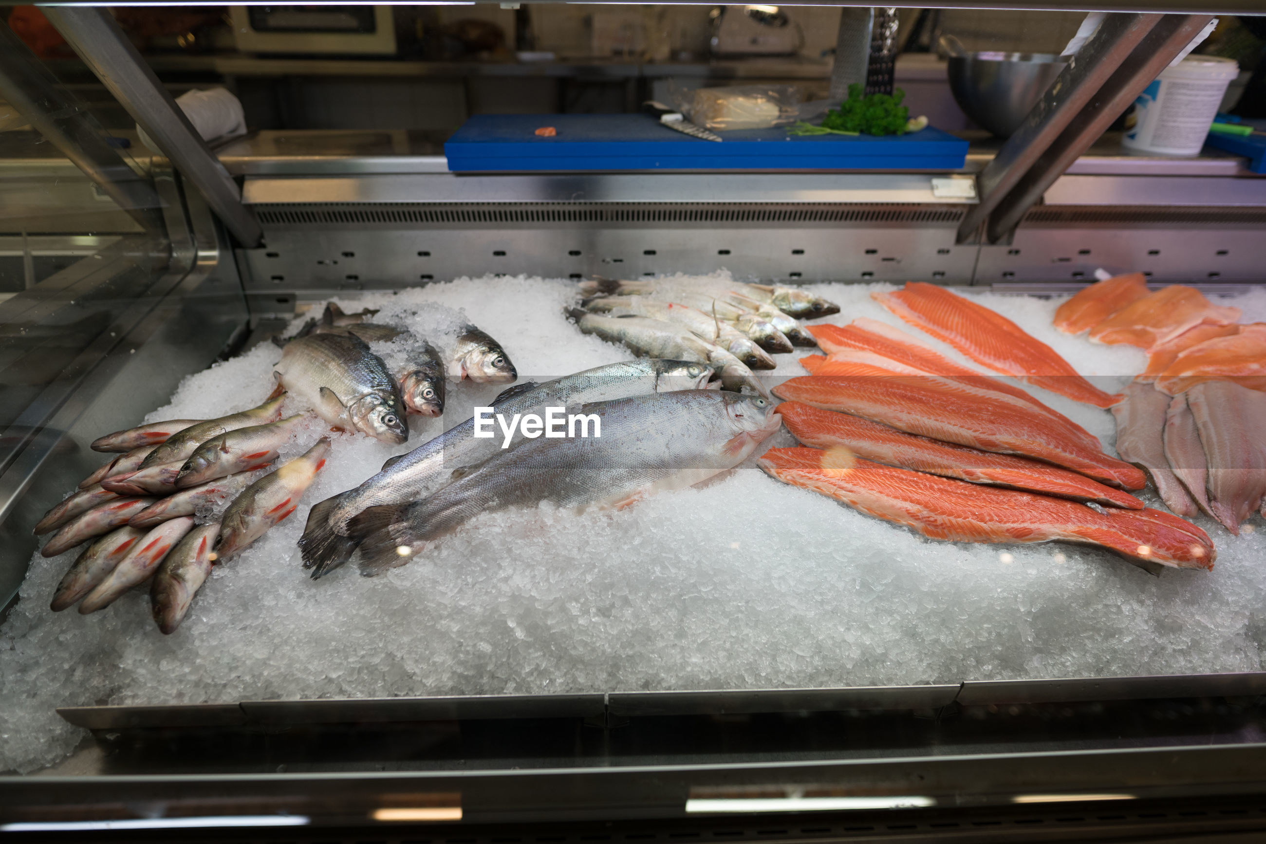 High angle view of dead fish on ice