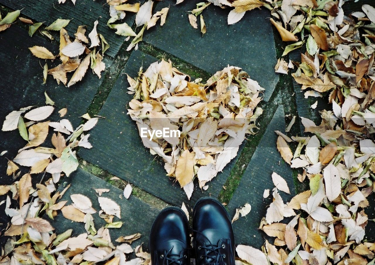 leaf, autumn, leaves, change, dry, fallen, high angle view, shoe, nature, low section, day, human leg, outdoors, one person, close-up, beauty in nature, people