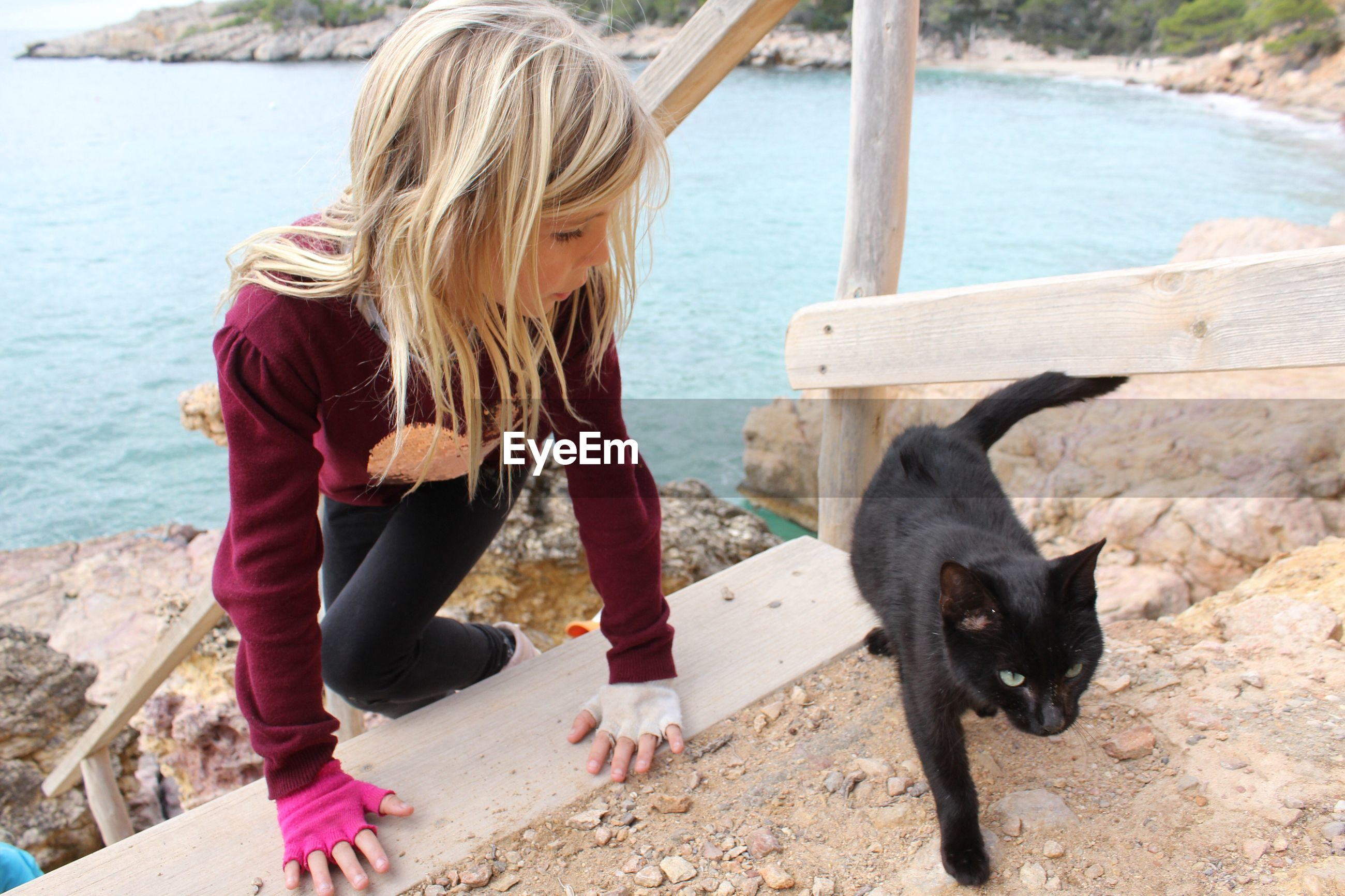 Girl looking at cat