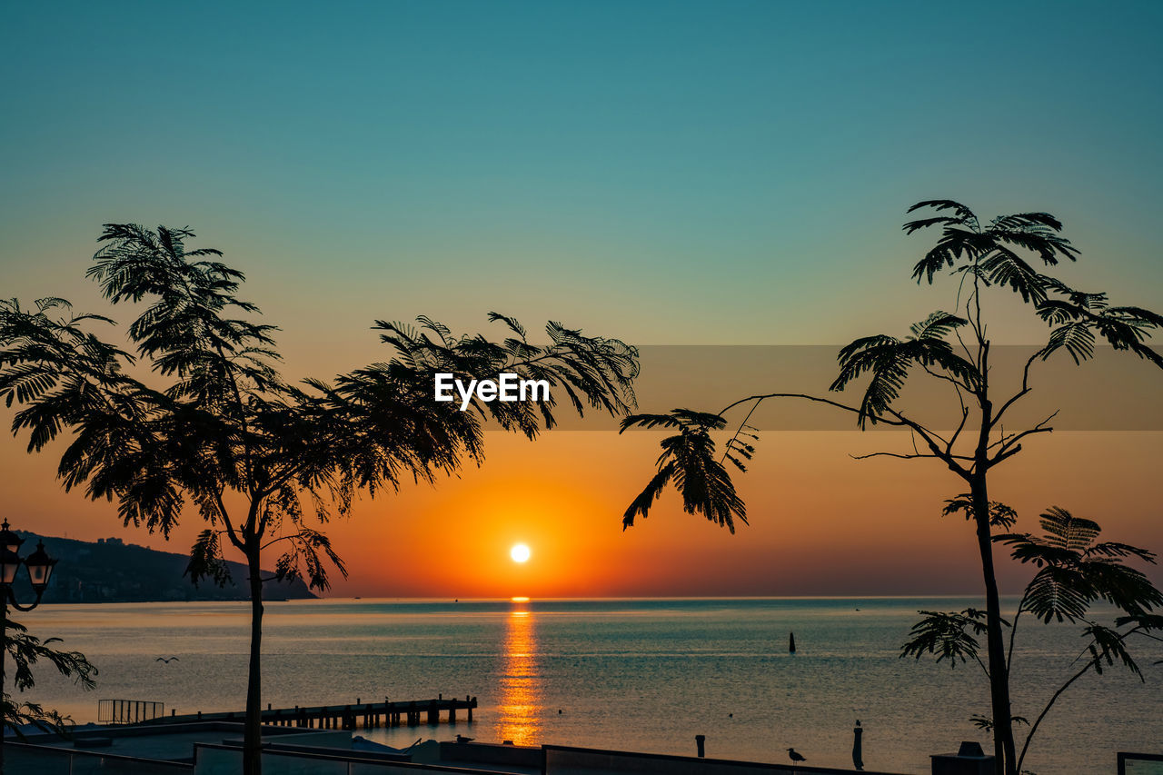 water, sky, sunset, sea, beauty in nature, scenics - nature, tree, horizon over water, tropical climate, sun, nature, plant, tranquil scene, tranquility, palm tree, horizon, silhouette, orange color, beach, no people, outdoors, swimming pool, coconut palm tree, palm leaf