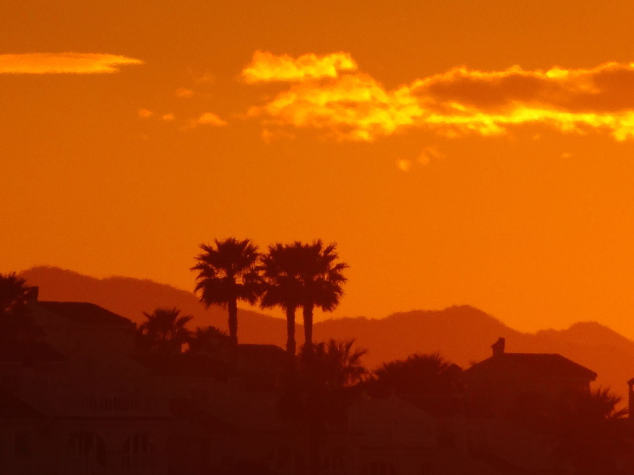 sunset, silhouette, orange color, tree, nature, tranquility, beauty in nature, tranquil scene, sky, scenics, no people, landscape, outdoors, palm tree, mountain, day