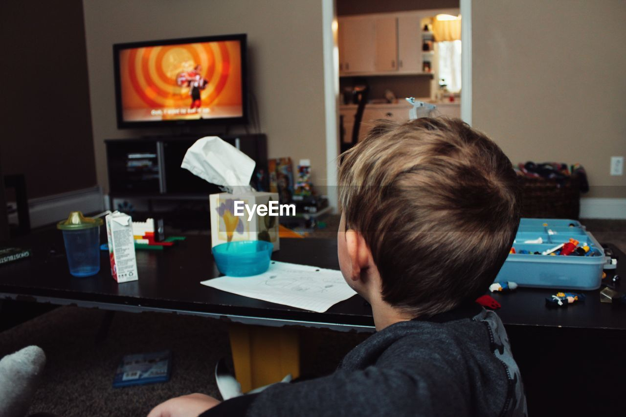 Rear View Of Boy Watching Television At Home