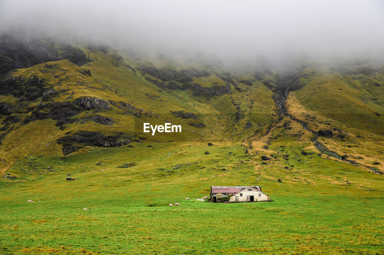 mountain, scenics - nature, environment, landscape, beauty in nature, green color, grass, nature, tranquil scene, non-urban scene, day, land, fog, field, building, plant, building exterior, tranquility, no people, outdoors