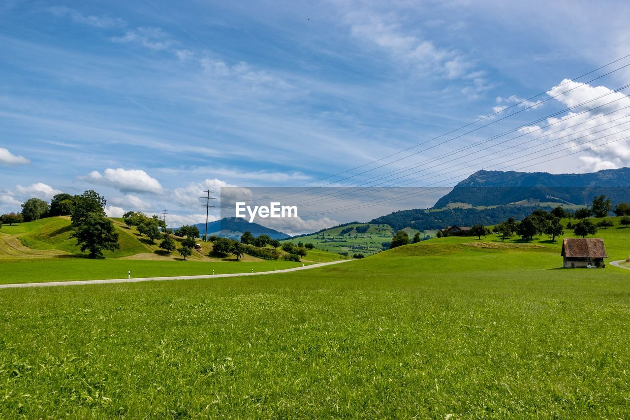 grass, sky, cloud - sky, scenics - nature, green color, landscape, environment, beauty in nature, tranquil scene, plant, mountain, land, tranquility, field, nature, no people, day, mountain range, non-urban scene, tree, outdoors, rolling landscape