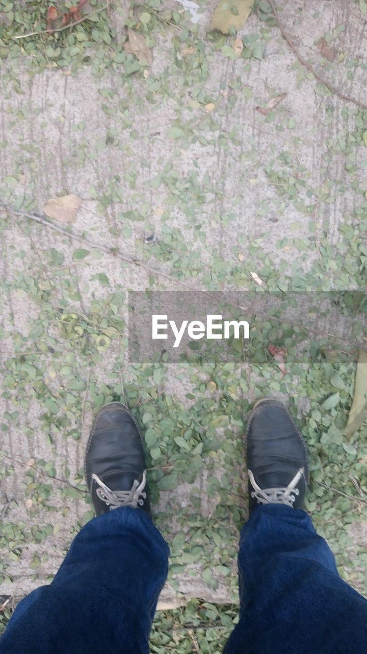 shoe, standing, low section, human leg, personal perspective, human body part, one person, jeans, real people, outdoors, day, men, lifestyles, nature, close-up, one man only, people