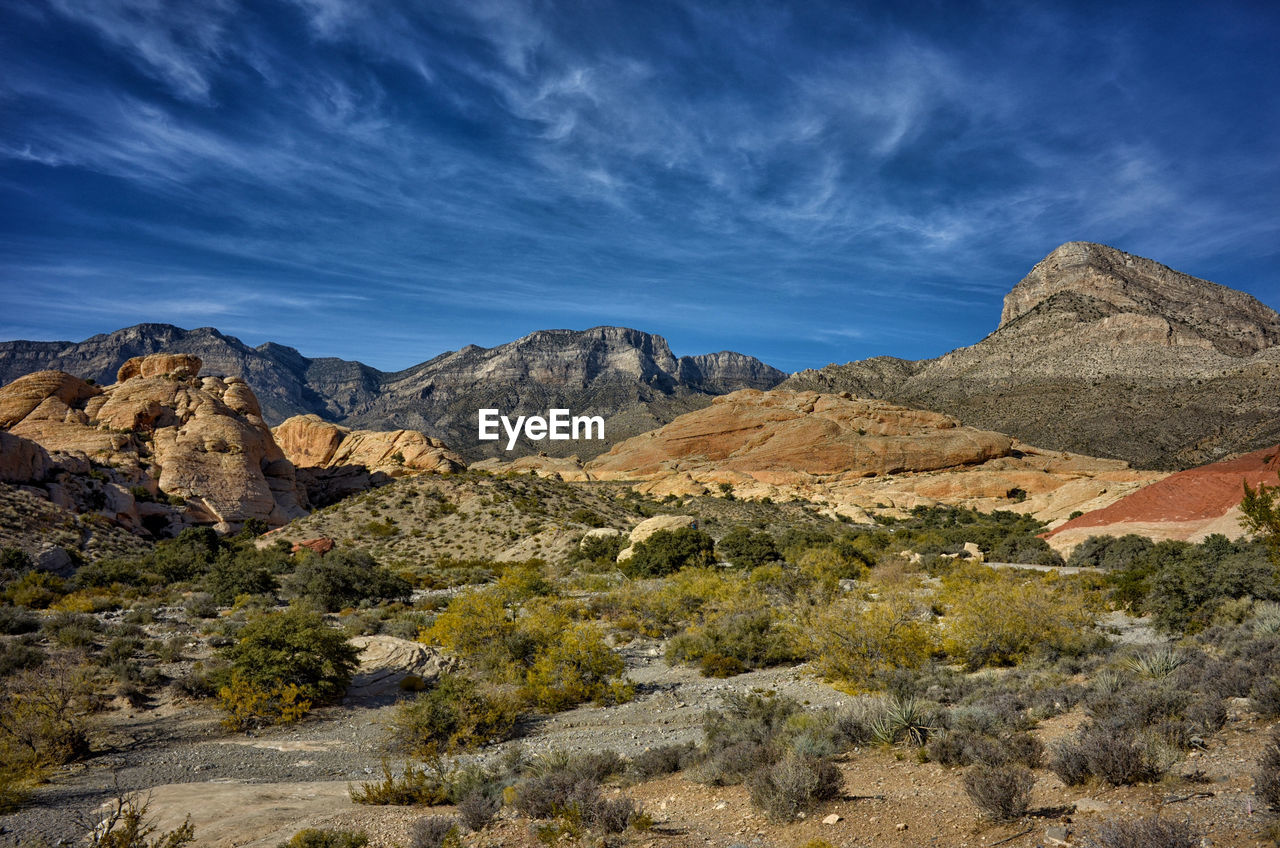 VIEW OF LANDSCAPE WITH MOUNTAIN RANGE IN BACKGROUND