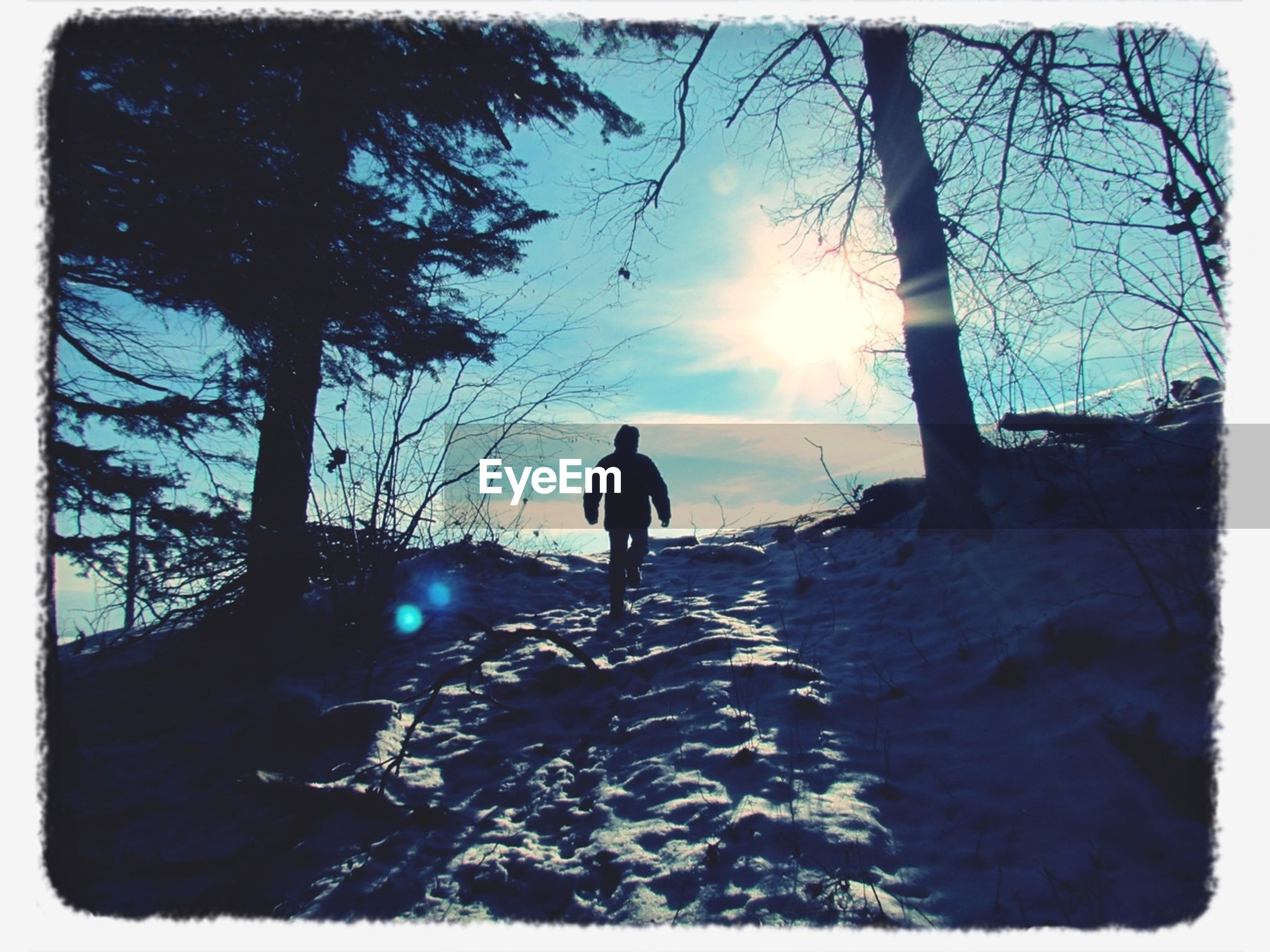 snow, winter, cold temperature, sun, tree, sunlight, season, bare tree, silhouette, full length, nature, transfer print, sky, walking, sunbeam, weather, tranquility, auto post production filter