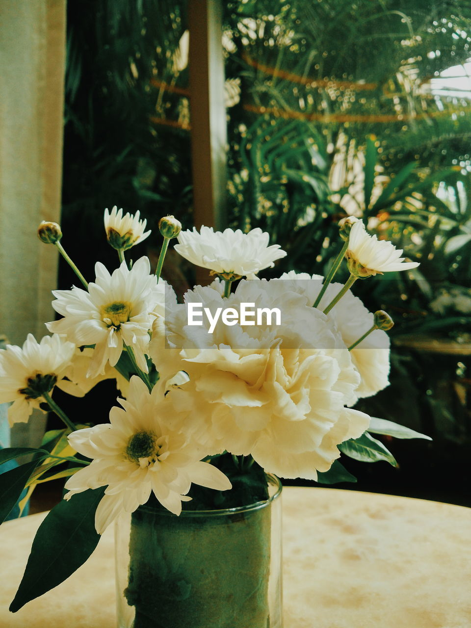 flower, flowering plant, plant, beauty in nature, vulnerability, freshness, fragility, nature, close-up, focus on foreground, petal, flower head, growth, vase, inflorescence, no people, white color, day, outdoors, yellow, flower arrangement, bunch of flowers
