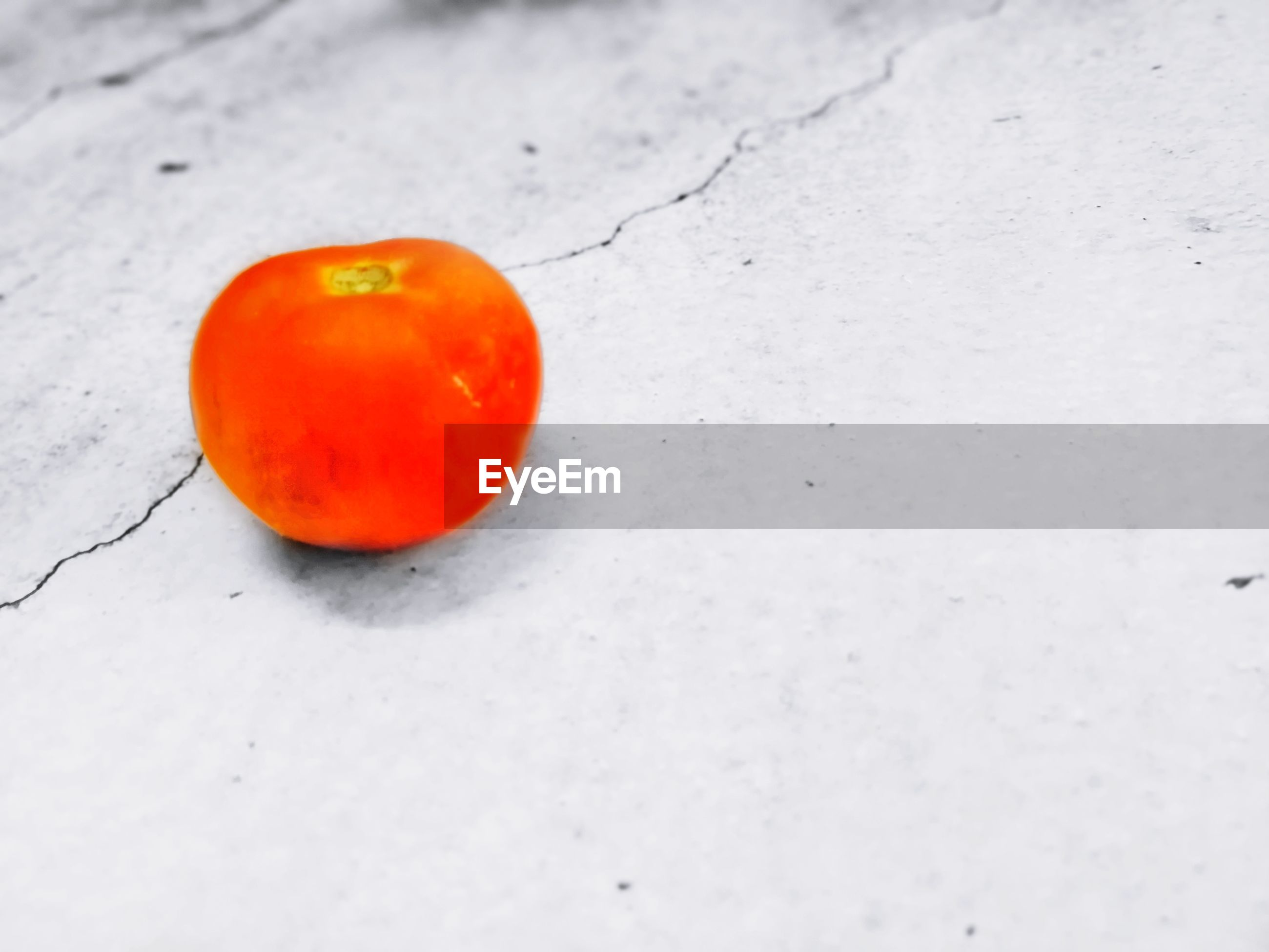 HIGH ANGLE VIEW OF ORANGE FRUIT ON SNOW COVERED